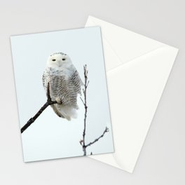 Snowy in the Wind (Snowy Owl) Stationery Cards