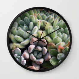 Succulent Party Wall Clock
