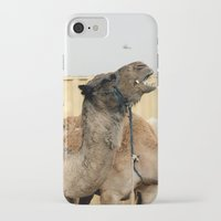 israel iPhone & iPod Cases featuring Israel Camels - Negev Desert by Rachel J