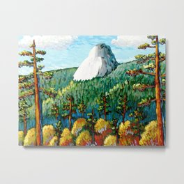 Colorful View Of Idyllwild California Metal Print