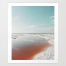 Salt Marsh: Alviso, California Art Print