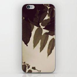 Green Leaves iPhone Skin