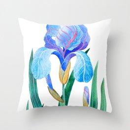 Light Blue Iris Throw Pillow
