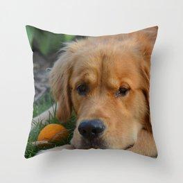 Charlie Boy Throw Pillow