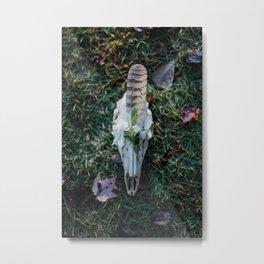 Deer & Owl Metal Print