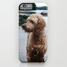 Dog in a lake Slim Case iPhone 6s