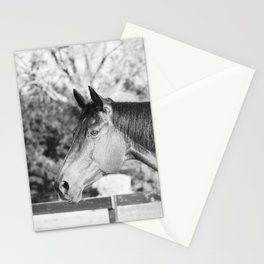 Autumn in Black & White Stationery Cards