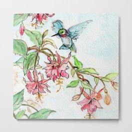 Honeysuckle Hummingbird Metal Print