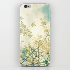 Clusters in the Sky iPhone & iPod Skin