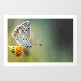 Composition in other colors....  Art Print