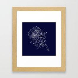 King Protea Outline - Navy and White Framed Art Print