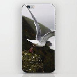 Taking flight iPhone Skin