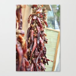 Dry Heat Canvas Print