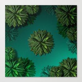 """Caribbean Peppermint"" Canvas Print"
