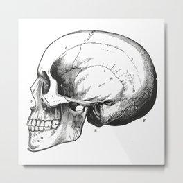 Skull 7 Metal Print