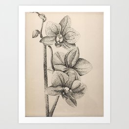 Orchidea a puntini - dotted orchid Art Print