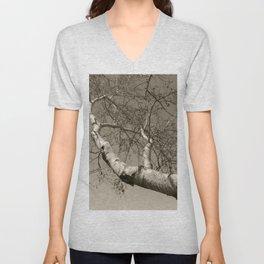 Birch tree #01 Unisex V-Neck