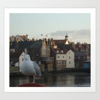 Gull Stands Guard at Whitby Harbour Art Print