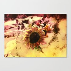 End of Season Sunflower Canvas Print