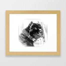 Pit Bull Models: Khan 03-02 Framed Art Print