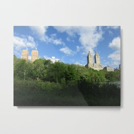 Central Park 1 Metal Print