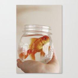 jar of fish Canvas Print