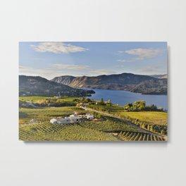 Okanagan Valley Vineyard Metal Print