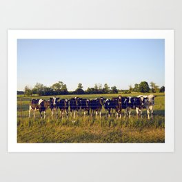 Cows In The Country II Art Print