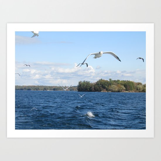 The Seagull Chase Art Print