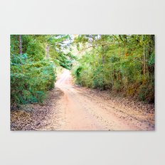 Road to Home Canvas Print