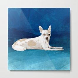 The Chihuahua Metal Print