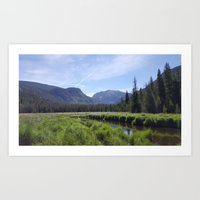 Summer in the Rockies- Meadow Views of the East Inlet Trail Part One of Four Art Print