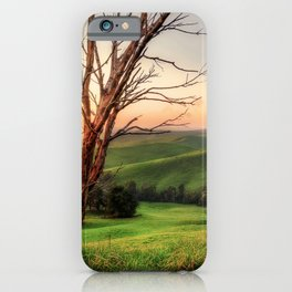 Paradise Valley iPhone Case
