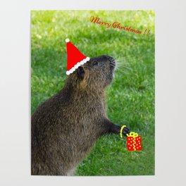 just for fun - a nutria santa ??? Poster