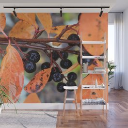 Choke Berries in Autumn Wall Mural