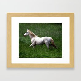 BEAUTIFUL WHITE HORSE Framed Art Print