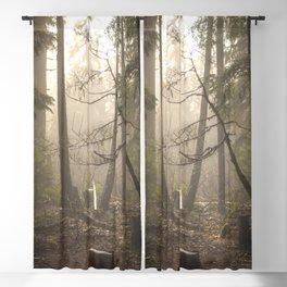Sunrise Forest Adventure Blackout Curtain