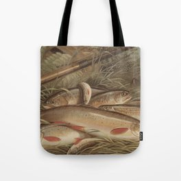 Vintage Painting of Caught Brook Trout (1868) Tote Bag