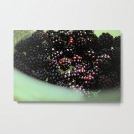 Freshly Grown Blackberries Metal Print