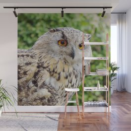 Eagle Owl with glowing eyes Wall Mural