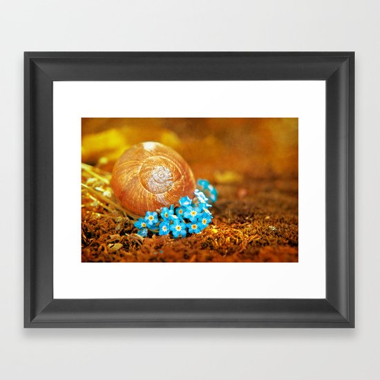 Golden snail house in a bed of forget-me-not Framed Art Print