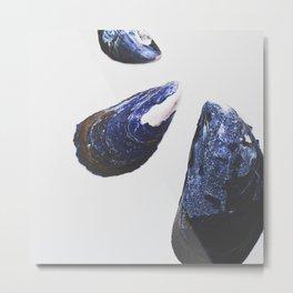 Mussel Shells Metal Print