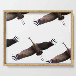 Cranes in flight #decor #society6 Serving Tray