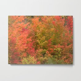 My favorite color is October Metal Print
