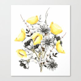 Poppies And Chicory Wildflower Bouquet Canvas Print