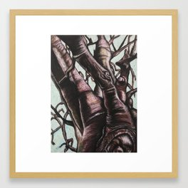 Knotted Tree Framed Art Print