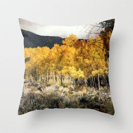 Autumn Hike Throw Pillow