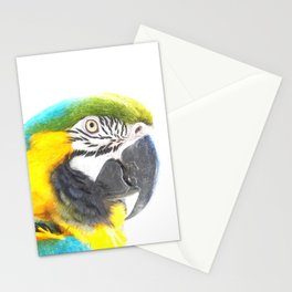 Macaw portrait Stationery Cards