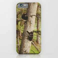 Climbing Cubs iPhone 6 Slim Case