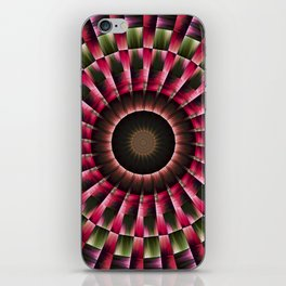 Bulls eye iPhone Skin